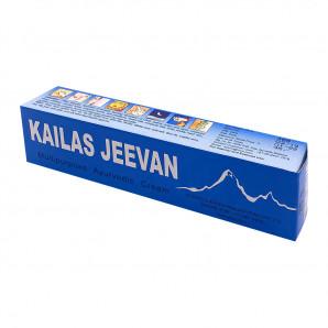 Кайлаш Дживан (Kailas Jeevan) мазь против ожогов, воспалений и порезов Sumshodhanalaya | Сумшоданалая 20г